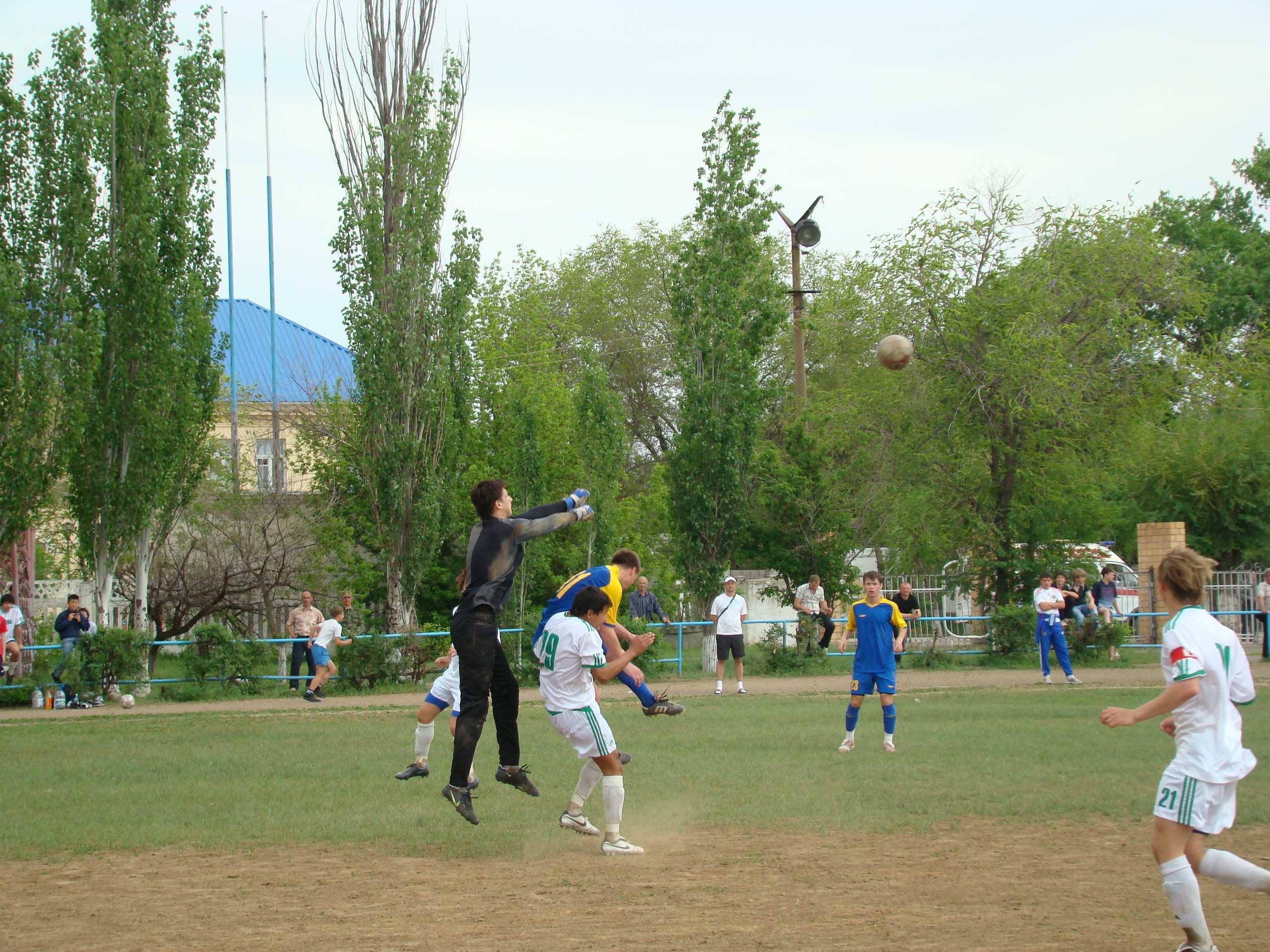 Приоритеты молодежной политики и спорта
