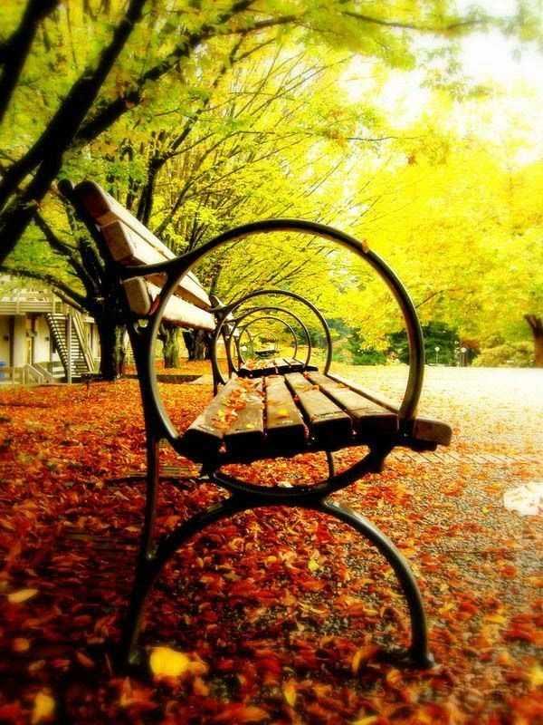 Бродит осень