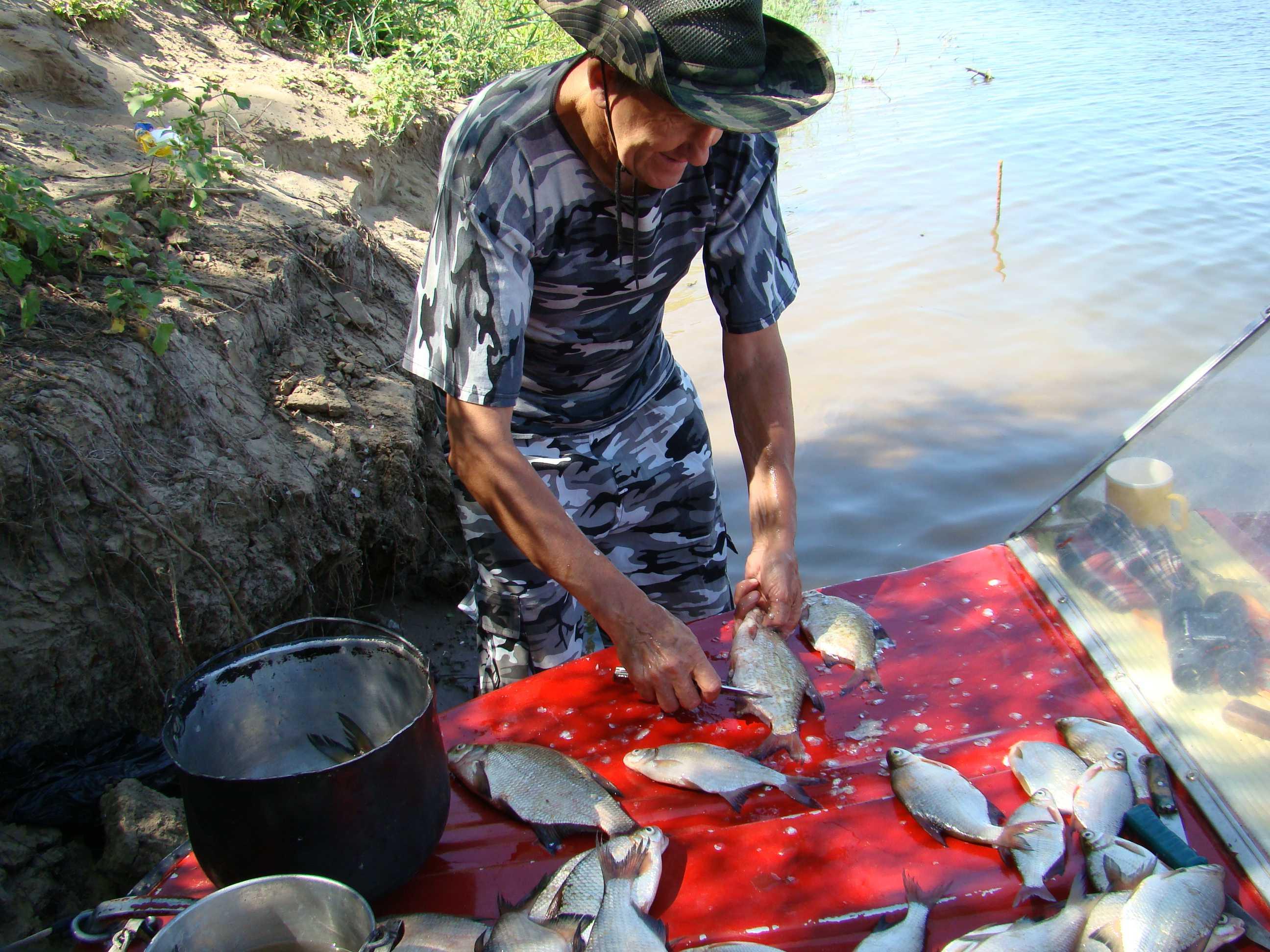 С праздником Вас, ахтубинские рыбаки!                                       Зарисовка: Рыбацкое счастье