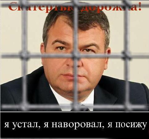 Анатолий Сердюков попросил амнистию