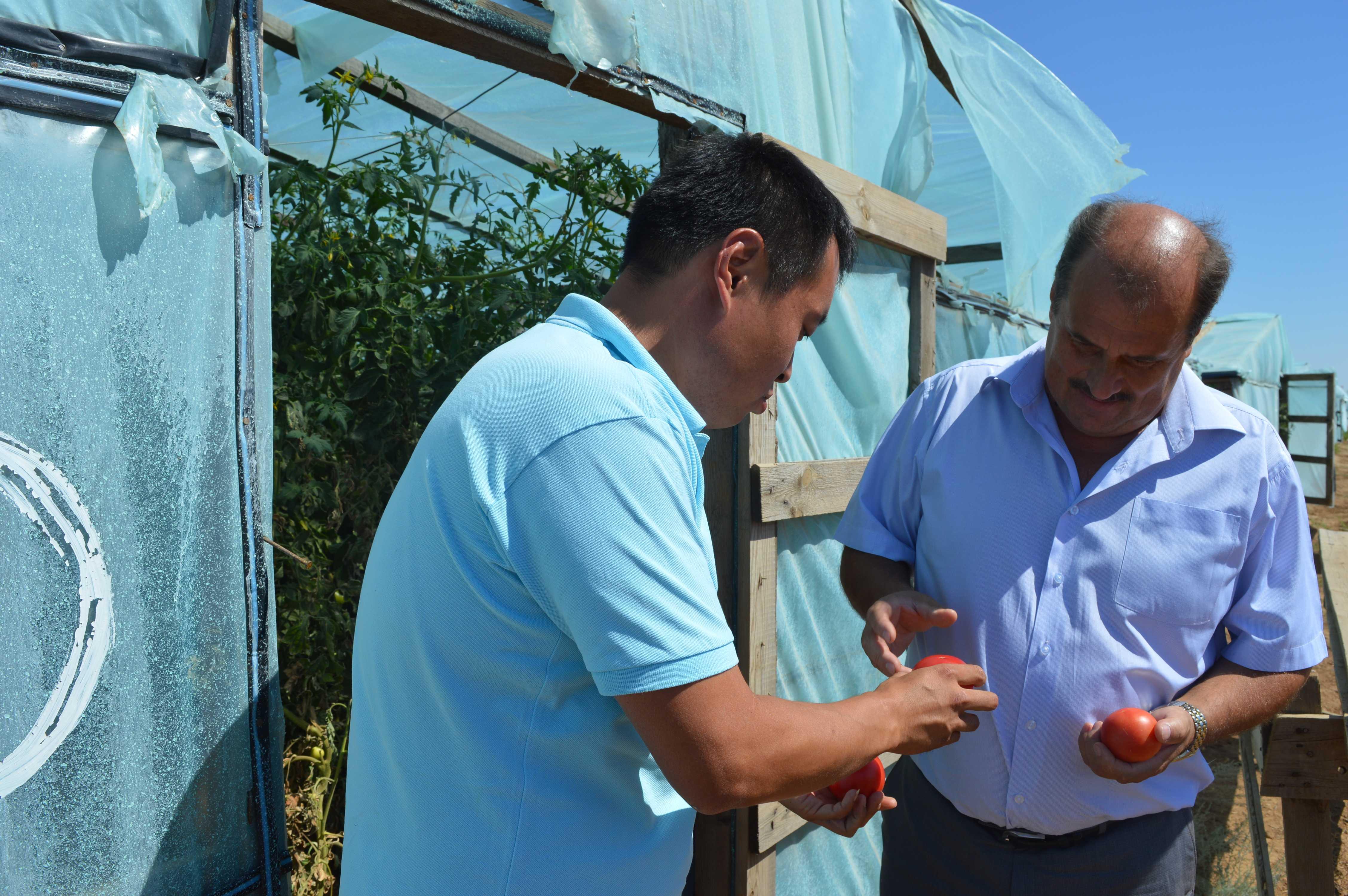 Рабочая поездка главы района в фермерские хозяйства северного куста: в бочке меда не обошлось без ложки дегтя