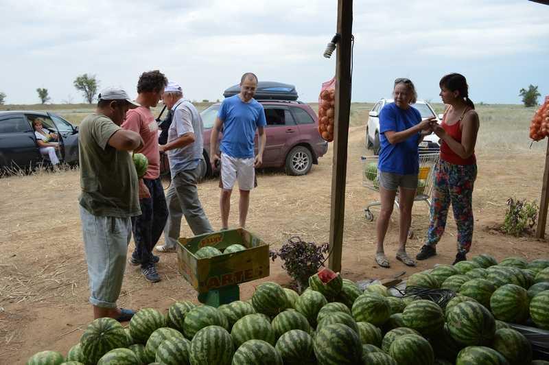 У ахтубинских фермеров нет проблем с реализацией сельскохозяйственной продукции