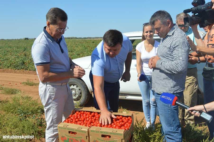 Ахтубинские сельхозпроизводители  удивили и порадовали губернатора