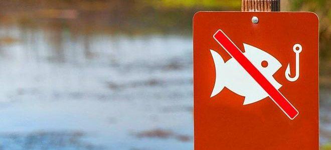 В астраханской области начал действовать запрет на рыбалку