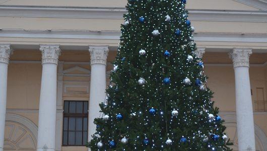 Сотрудники МБУ «Чистый город» установили елку на центральной площади Ахтубинска